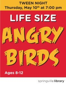Life Size Angry Birds Tween Night