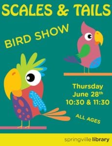Scales & Tails Bird Show
