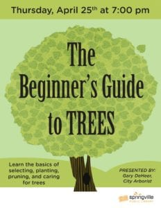 Beginner's Guide to Trees