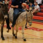 Donkeys go at whatever speed they determine...