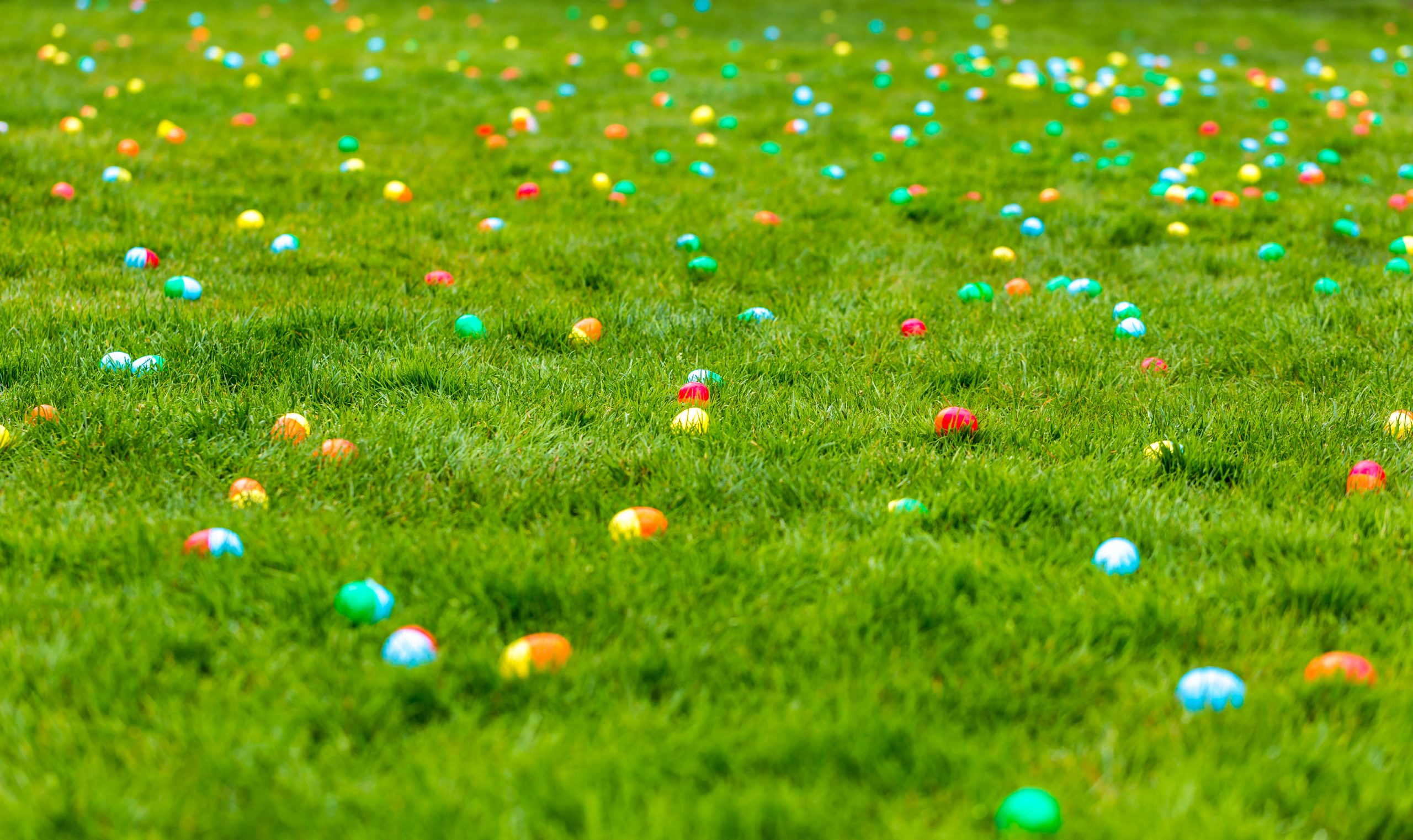 Easter Egg Hunt @ Springville High School