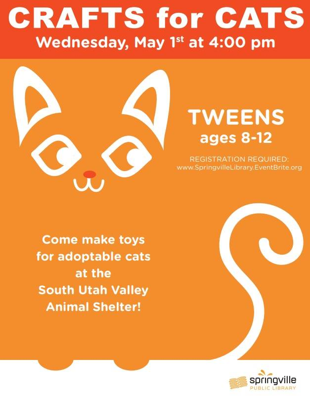 Crafts for Cats @ Springville Public Library
