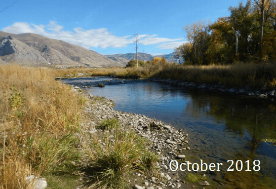 Hobble Creek Cleanup Day @ Community Park
